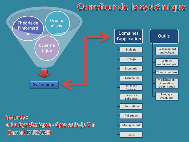carrefour_systemique_650